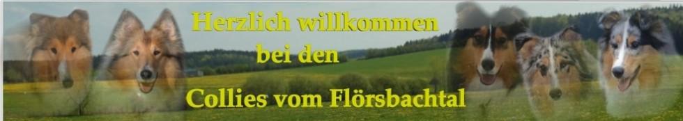Collies vom Fl's Company logo